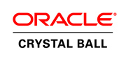 Crystal Ball Services Partner